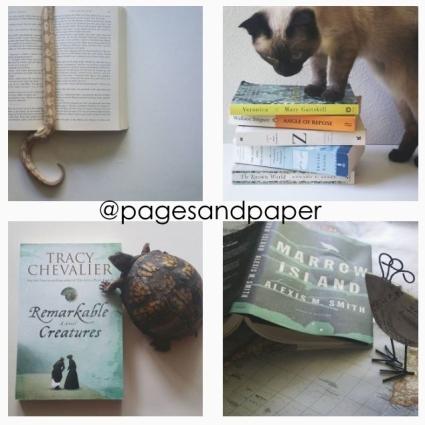 pagesandpaper